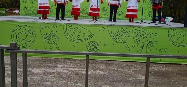 Фестиваль Родной культуры «Родники земли Самарской»